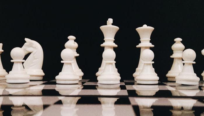 체스를 하면 머리가 좋아지나요?
