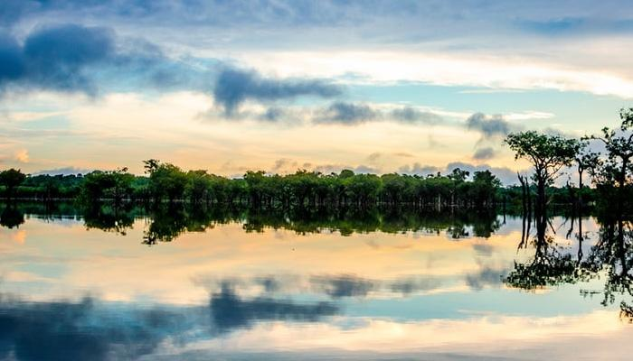 아직도 미지의 영역이 남아있는 아마존~