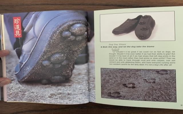 고양이 발자국으로 찍히는 신발