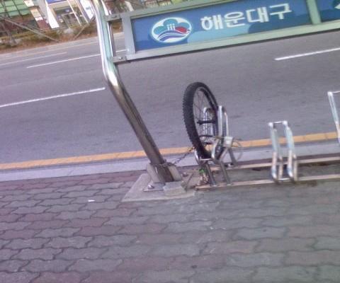 한국인은 자전거를 좋아한다.