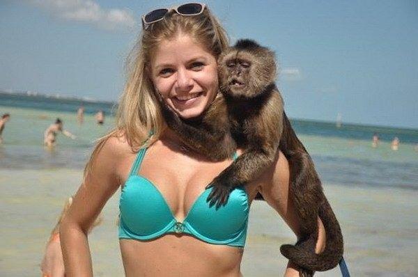 밝히는 원숭이!!