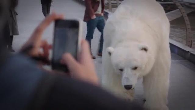 지하철 역에서 만난 북극곰